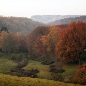 Neandertal in autumn © County of Mettmann | Martina Chardin